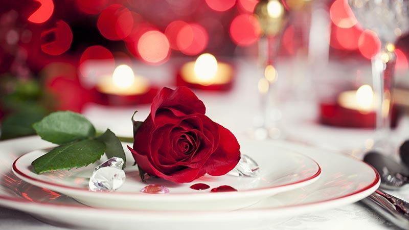 یک شاخه گل رز قرمز