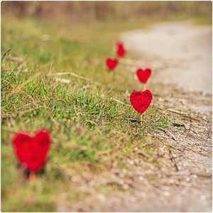 جاده با قلب های قرمز کوچک