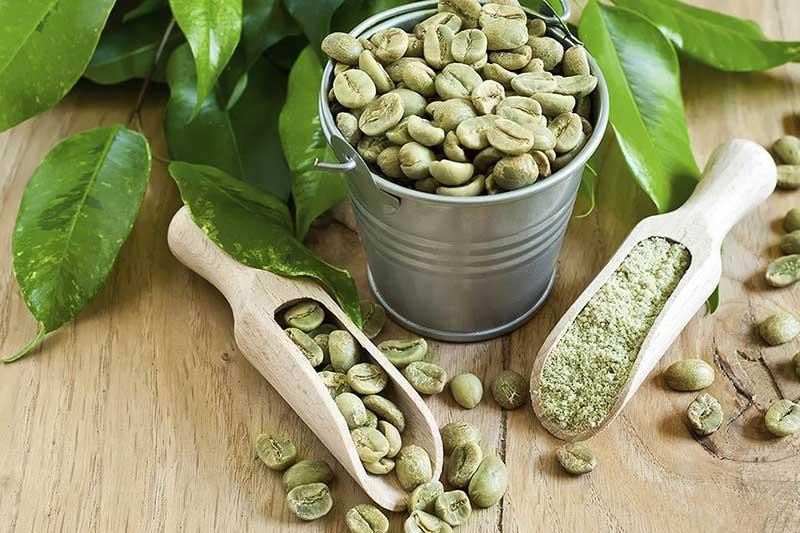 پودر و دانه قهوه سبز