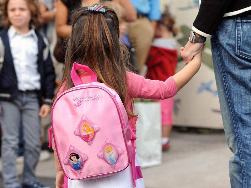 کیف مدرسه صورتی کوچک