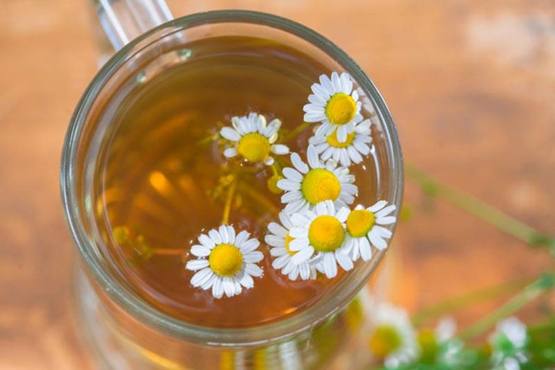 چای و گل بابونه