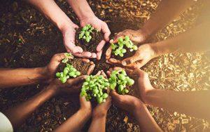 روز جهانی زمین پاک