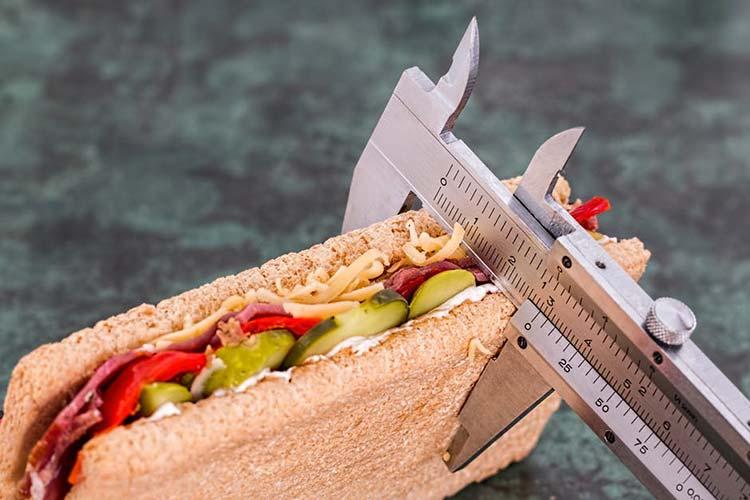 کالری ساندویچ